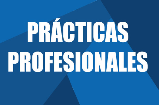https://www.itson.mx/img_nota/practicasprofesionales-2018-2.jpg